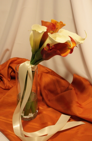 ORANGE AND WHITE CALLAS